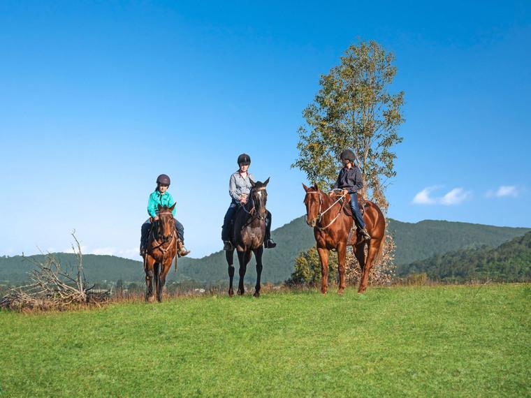 HORSE LOVERS REJOICE